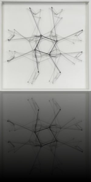 Roger vilder, organisme chromatique, 2013