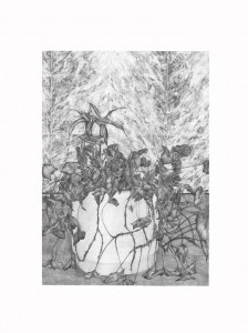 Hall B (plante 2), 60x45cm, 2014